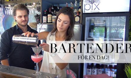 Testar: livet som bartender